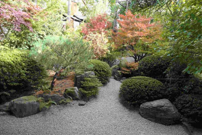 Kleiner eingeschlossener Garten
