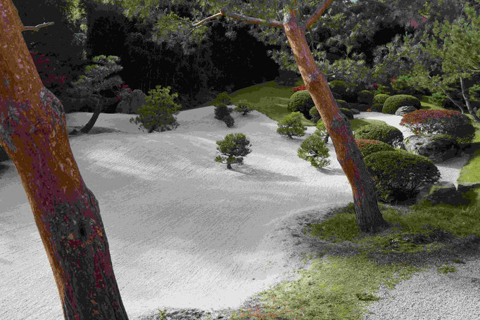 Wolkenmeer-Garten
