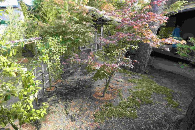 Am Teegarten