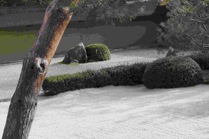 Blick auf den Zen-Garten