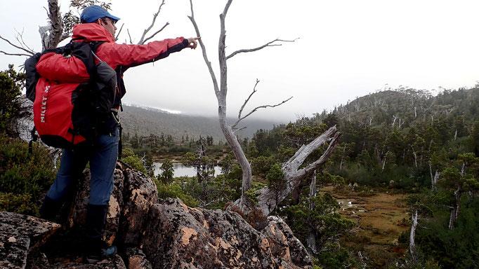 NOUVELLE-ZELANDE, AUSTRALIE, TASMANIE, projet Azimut Brutal : progression sauvage en pleine forêts primaires et bushs