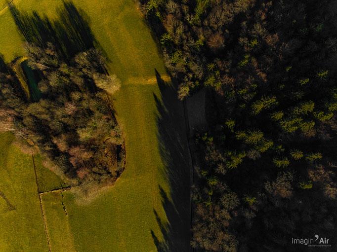 Limite d'un champs avec la forêt près de St Hélène du Lac. (73)