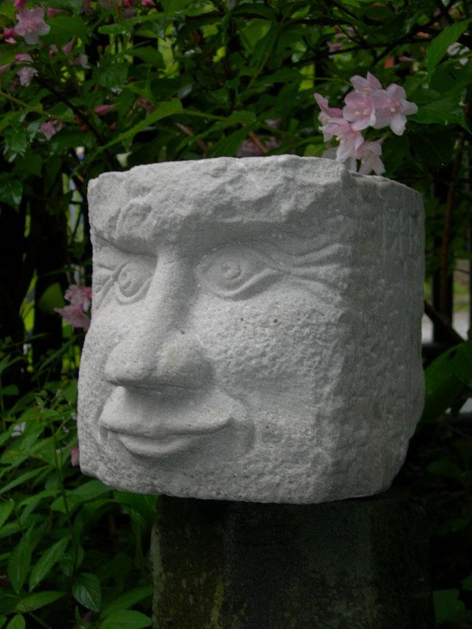 Gesicht 2012