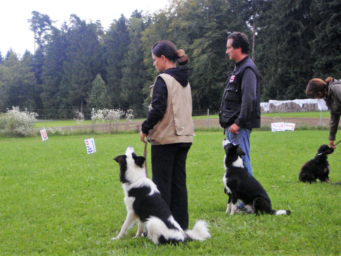 Rally-Obedience © Hundeschule gooddog