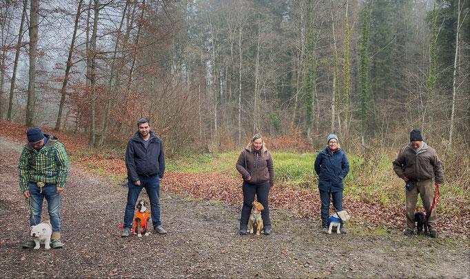 Welpentreffs Bläsimühle © Hundeschule gooddog
