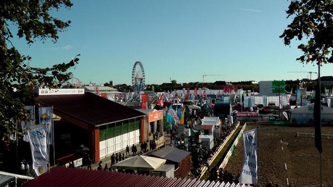 125. Bayerischen Zentral-Landwirtschaftsfest findet direkt neben der Wiesn statt.