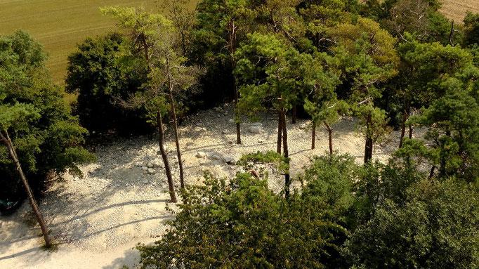 Blick vom Aussichtsturm zum Fossilklopfplatz an der Hohenmirsberger Platte