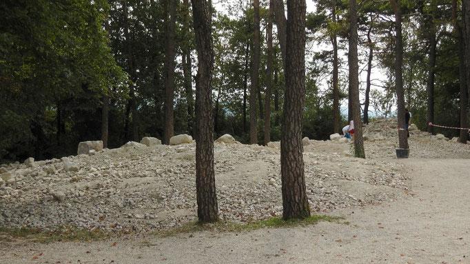 Fossilklopfplatz an der Hohenmirsberger Platte