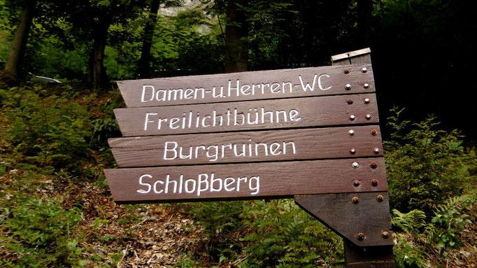 Wanderweg vom Kurpark hoch auf dem Schlossberg zu den Ruinen
