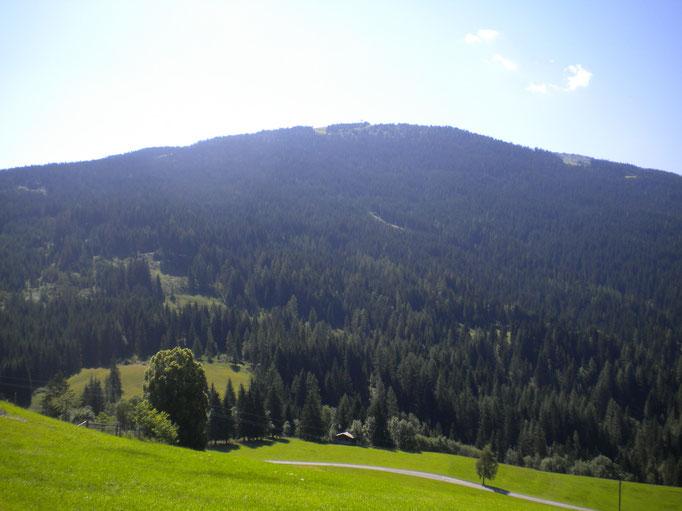 Ausblick Sommer