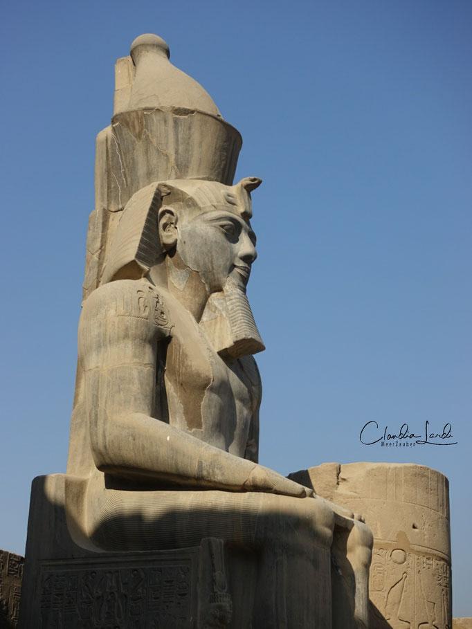 Ramses...hätte ich gerne persönlich getroffen, 2020