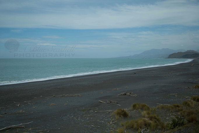 Coastal Pacific Train Ride