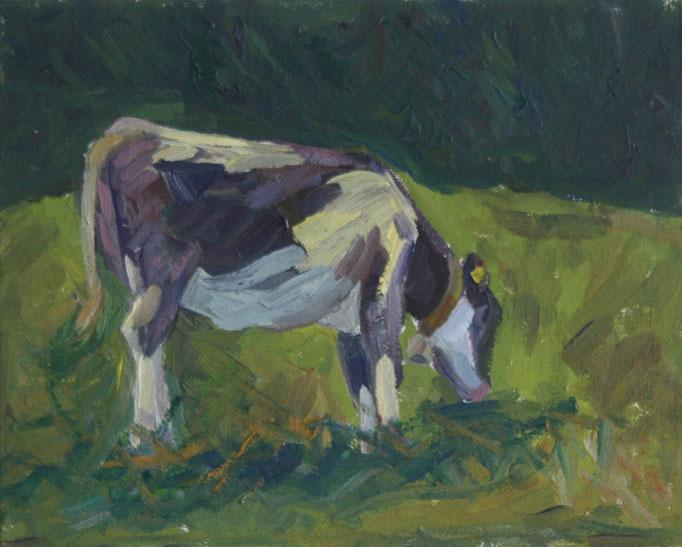 Weidende Kuh auf Ahornalp   Oel  Aug. 2014