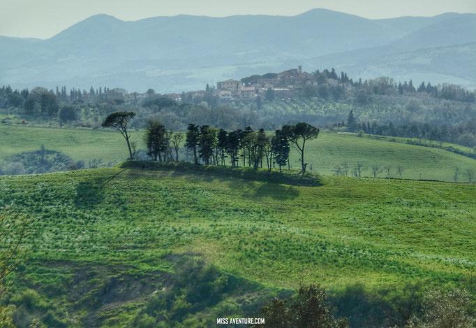Paysage de Toscane.