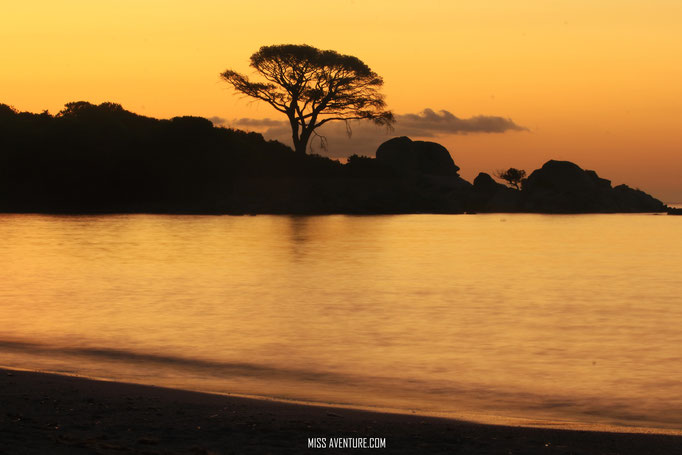 Lever de soleil sur la plage de Palombaggia.