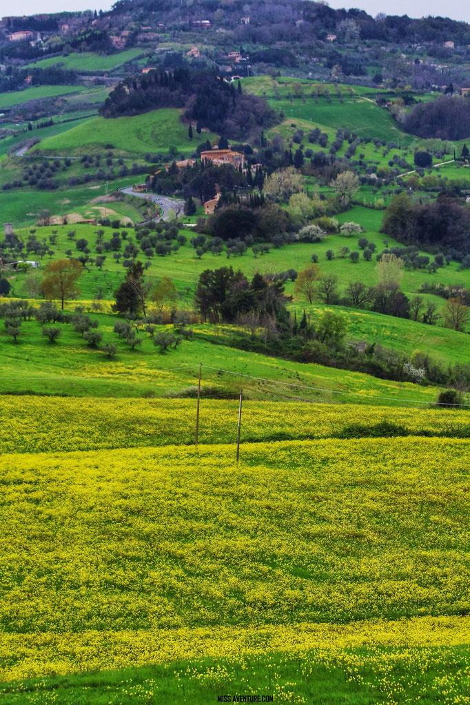 La campagne Toscane.