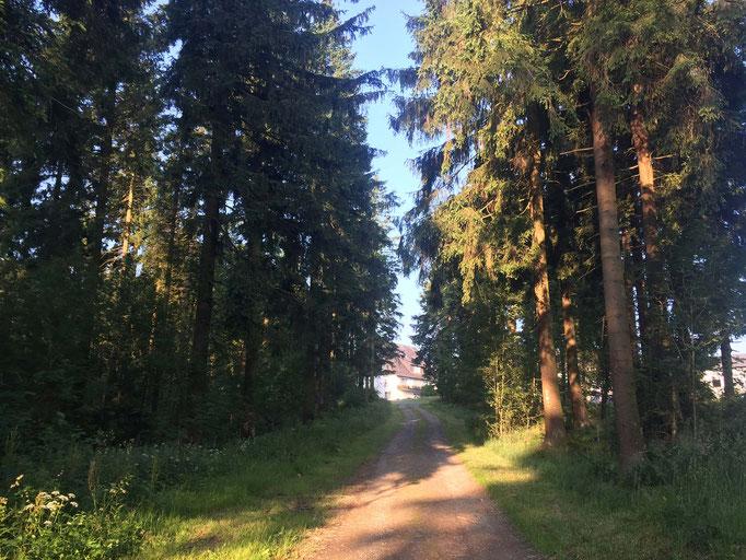 Sauerland-Urlaub mitten in der Natur