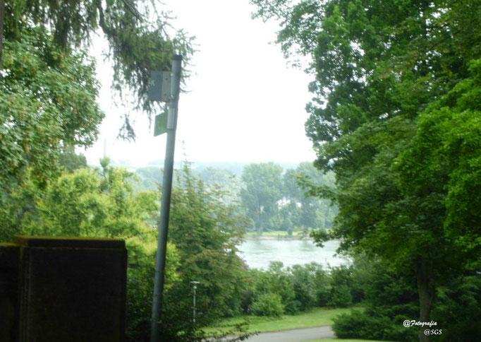 Blick vom Stadtpark auf den Rhein