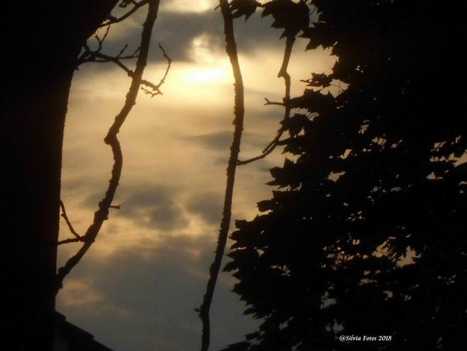 Nebelsonne 1/Aufnahme unterwegs