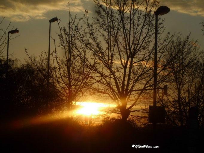 Morgensonne/Aufnahme unterwegs