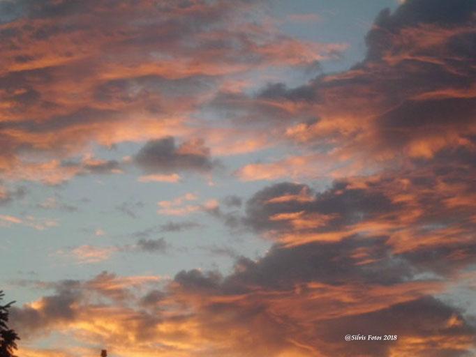 Roter Himmel 1/Aufnahme Garten