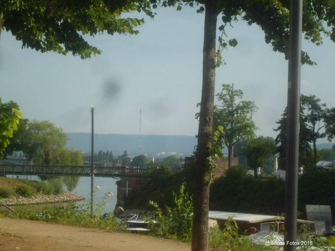 Rhein Juli 2018