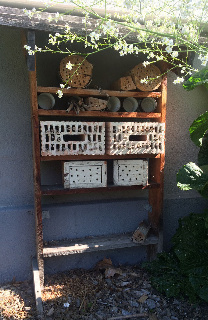 Das Bienenhotel braucht eine Erneuerung. Wer möchte mithelfen?