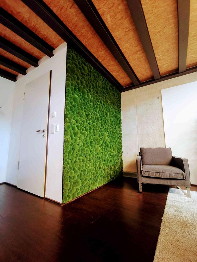 natürliche Wandgestaltung mit Polstermoos