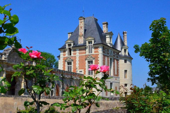 Le Champ du Pré - Chambre d'hôtes Sologne Val de Loire - A visiter près de chez nous : le château de Selles-sur-Cher