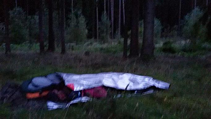 Scjhlafen unter Fichten