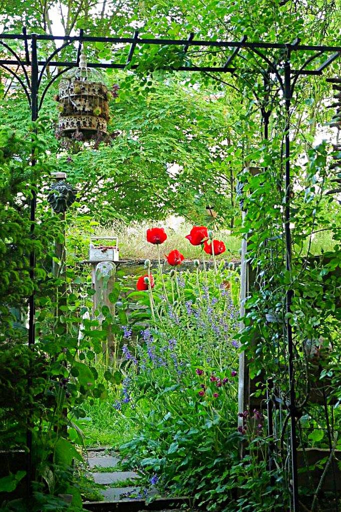 Willkommen in unserem Garten