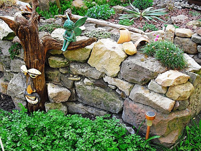 Kerbel vor Steingartenmauer