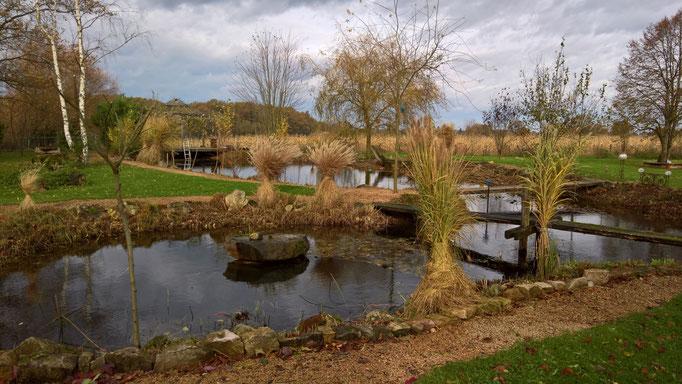 Der Teich in seiner vollen Grösse - sieht man nur vom November bis in den Frühling