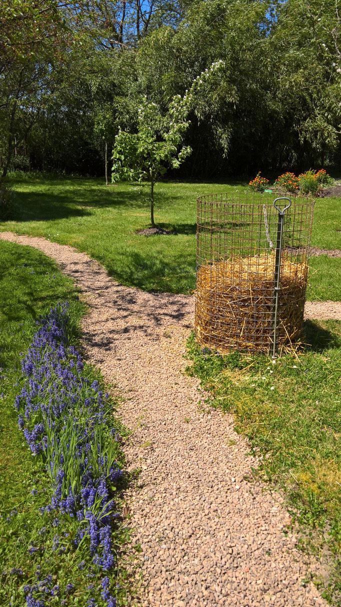 Ein Kartoffelturm aus Stroh - und dazu die blaue Gundelrebe
