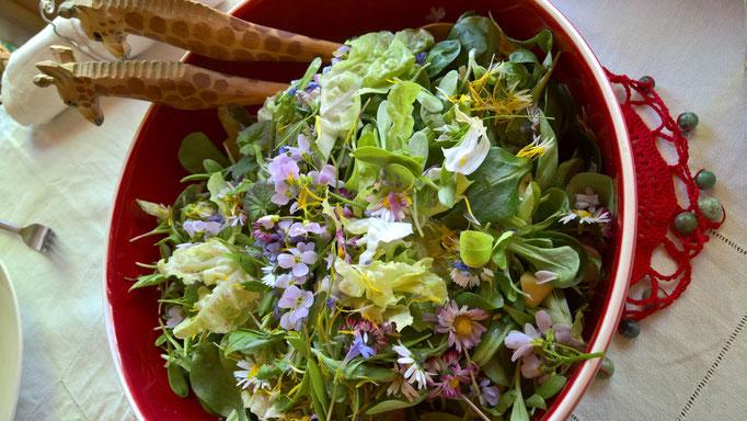Bunte Salate mit Blumen und Wiesenkräutern gibt es fast jeden Mittag