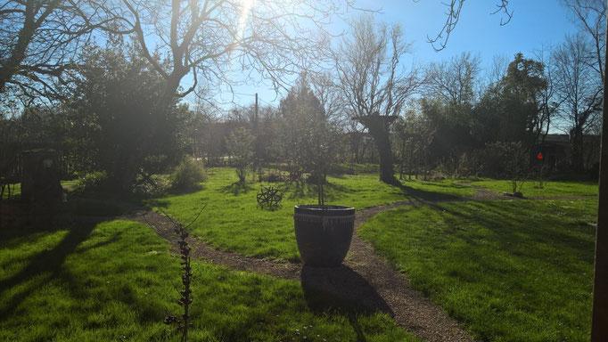 Februarsonne im Garten