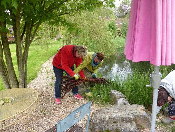 mit Hilfe von Marie-Luise holen wir die eingeweichten Weidenruten aus dem Wasser ...