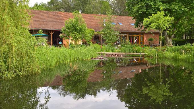 Der Teich, so voll wie sonst nur im Winter