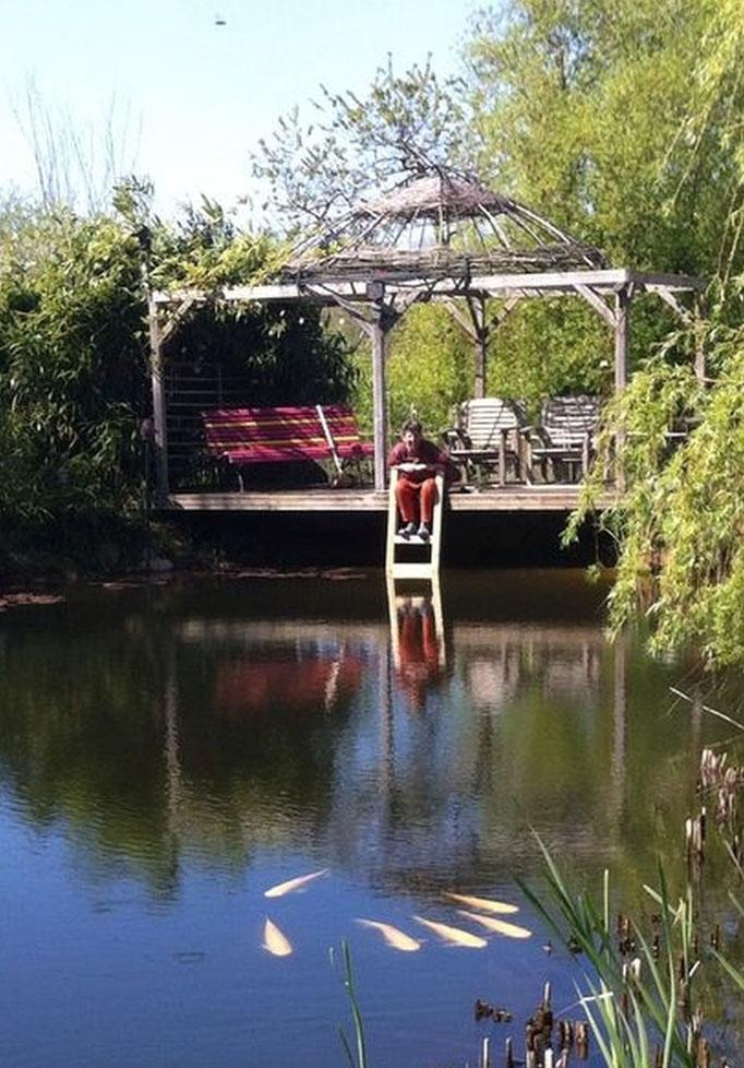 Der Schwimmteich hat endlich eine schöne Holzleiter