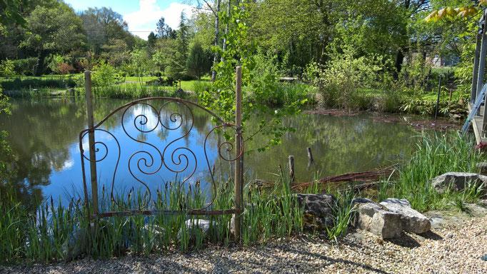 Im Teich liegen noch die Weidenruten, die wir verarbeiten wollen