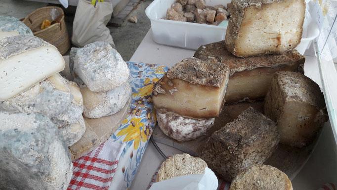 Käseauswahl auf dem Markt von Louhans