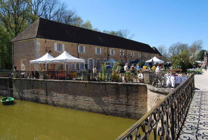 Pflanzenraritätenmarkt in Pierre de Bresse