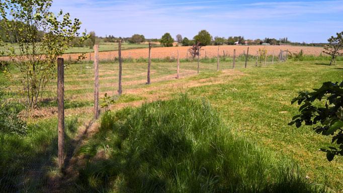 Der neue Zaun für mehr Platz für die Hühner
