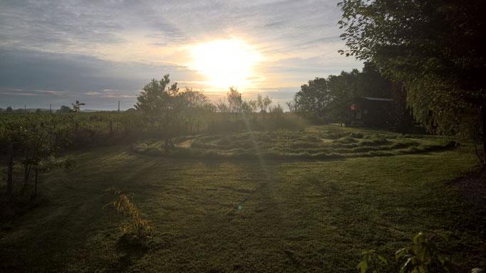 Die Spirale im Morgenlicht