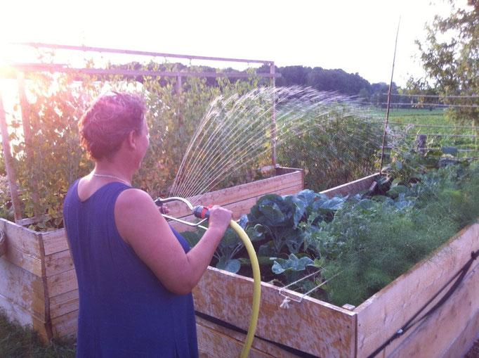 Wasser vom Teich fürs Gemüse