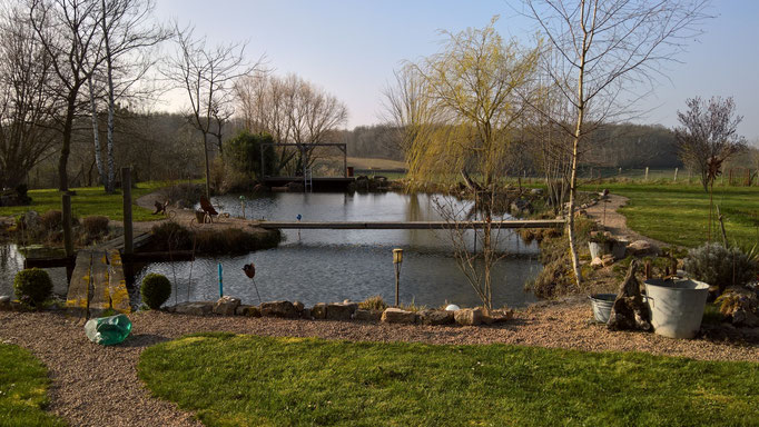 Der Teich ist randvoll, wie schon lange nicht mehr