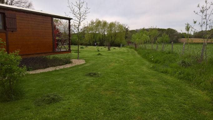 Der Rasen macht viel Arbeit in diesem Jahr, zweimal geschnitten, zweimal alles zusammen genommen