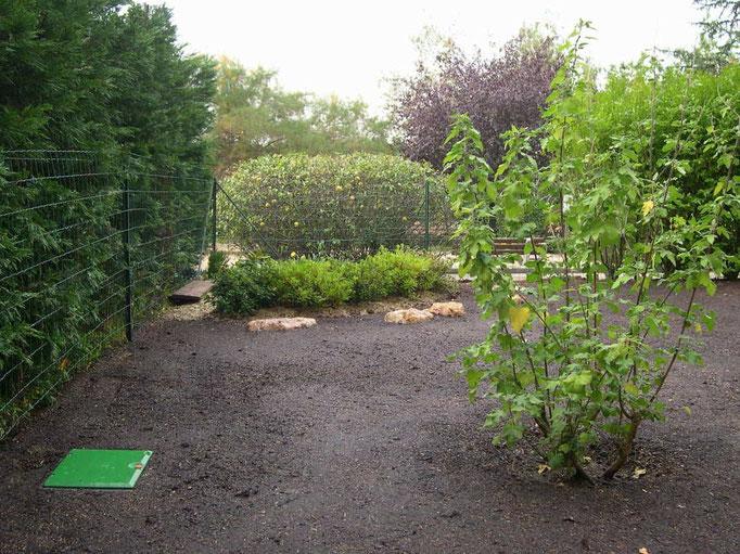 Création de pelouse avec arrosage automatique
