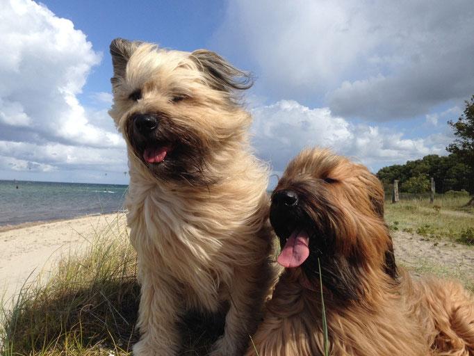 Lilo und Pippin
