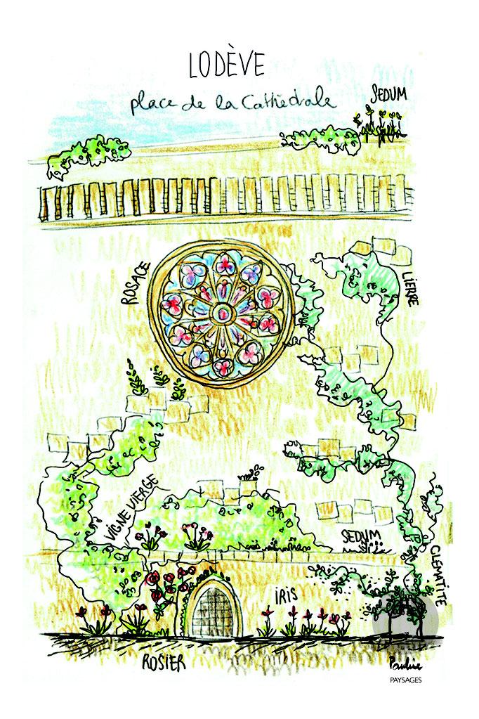La Cathédrale de Lodève végétalisée